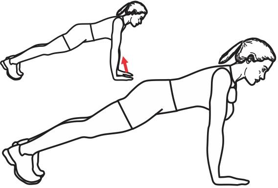 exercice de gainage pour muscler ses abdominaux